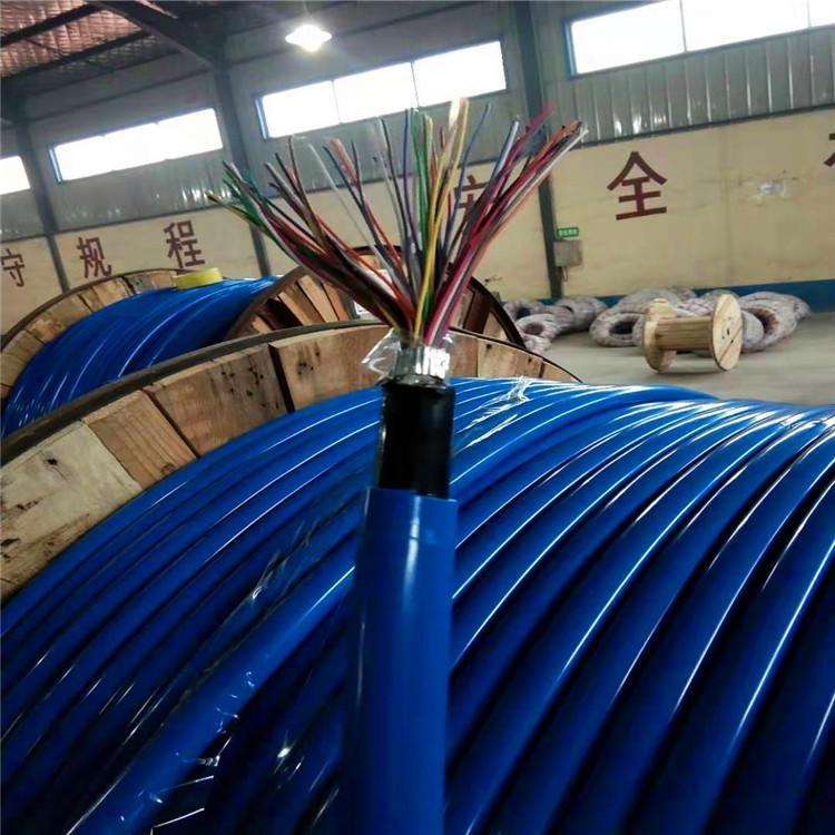 耐高温计算机DJYVP电缆