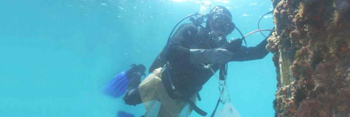 英国信固水下型潜水员便携式水下超声波测厚仪