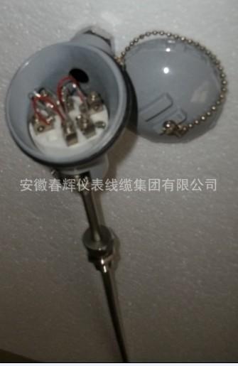 WZPK-136铠装热电阻