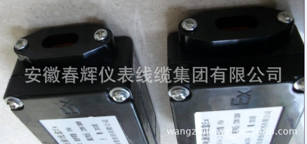防爆直型二通接线盒