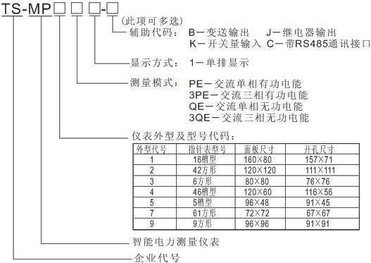 TS-MP2PE1 单(三)相有功电能表