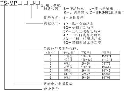 TS-MP53P1 单(三)相有功功率表