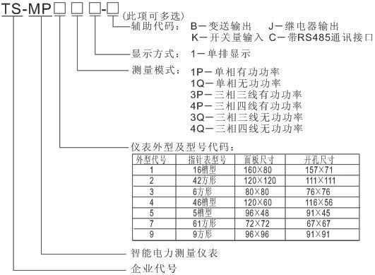 TS-MP91P1 单(三)相有功功率表
