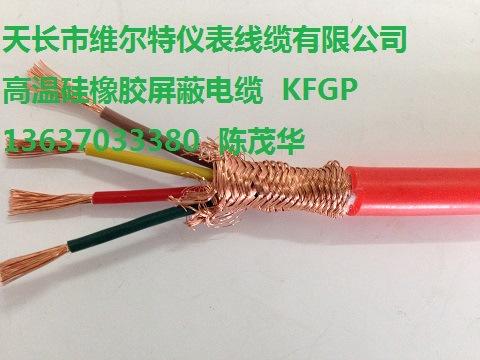 IA-ZR-DJFP1GP1R-2*2*1.0 阻燃本安防腐硅橡胶屏蔽电缆